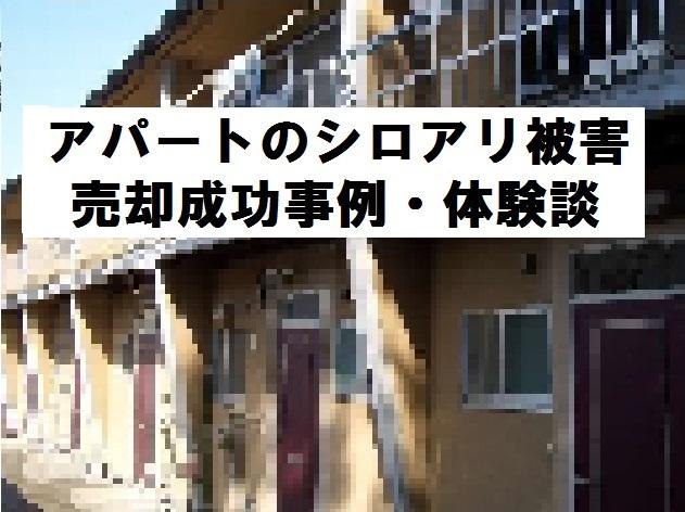 シロアリ被害にあっているアパートの売却成功事例